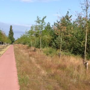 fiets werk 6